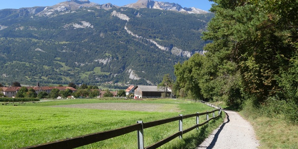 Fürstenwald mit Blick zum Calanda