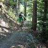 Trail-Spass in den Wäldern