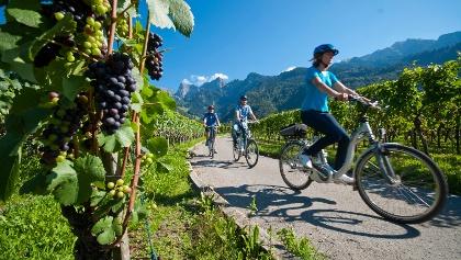 Unterwegs in der Weinregion Bündner Herrschaft