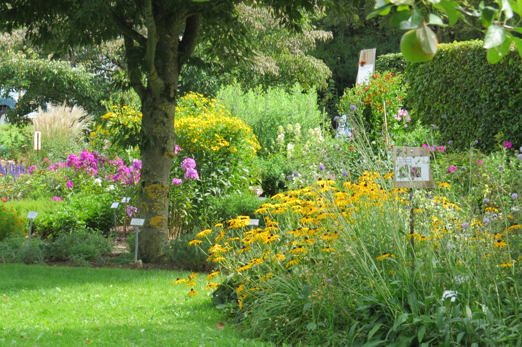 Sommer im Schaugarten in Seeshaupt ()