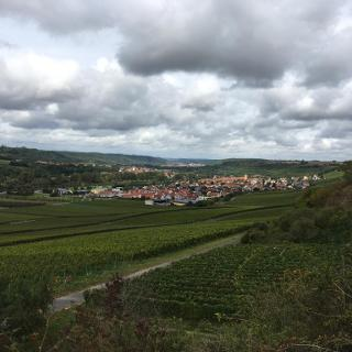 Blick nach Sommerhausen