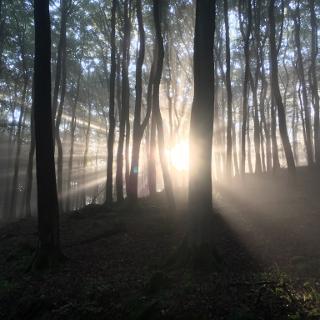 Das Licht am ersten Morgen