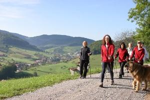Bächlewald-Tour