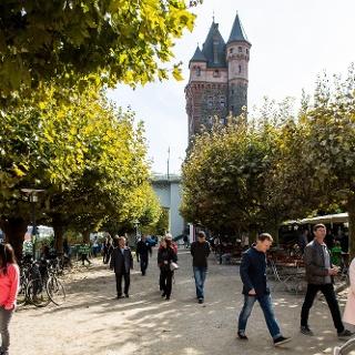 Stellplatz Rheinpromenade