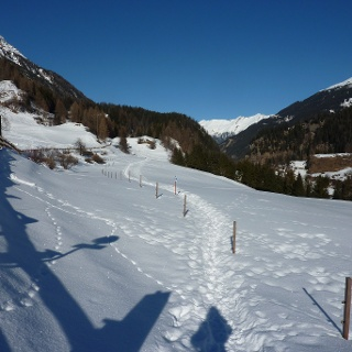 Schneeschuhtrail Bergünerstein