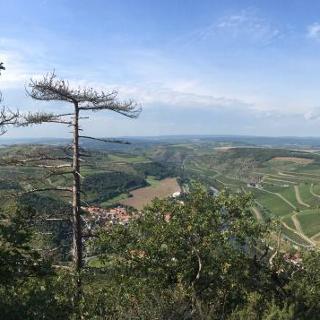 Schöne Aussicht Lemberg