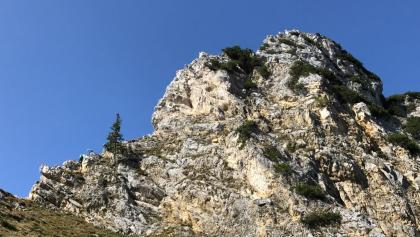 Friedberger Klettersteig : Die schönsten klettersteige in musau