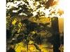 Weinberge im Weinsberger Tal  - @ Autor: Beate Philipp  - © Quelle: Rappenhof