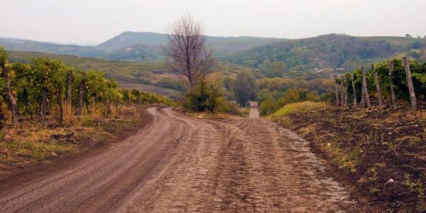 Ostorosi szőlőhegy
