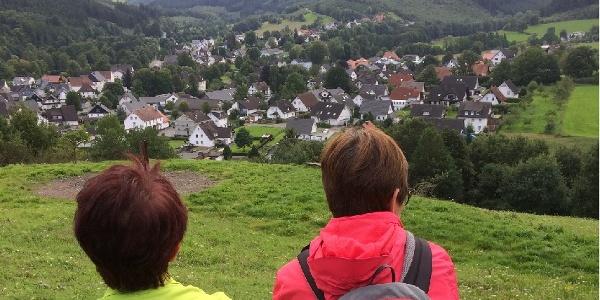 Blick von der Steinert auf Allendorf