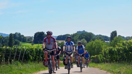 E-Bike-Gruppe am Anstieg
