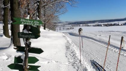 Winterwandern in Beerwalde