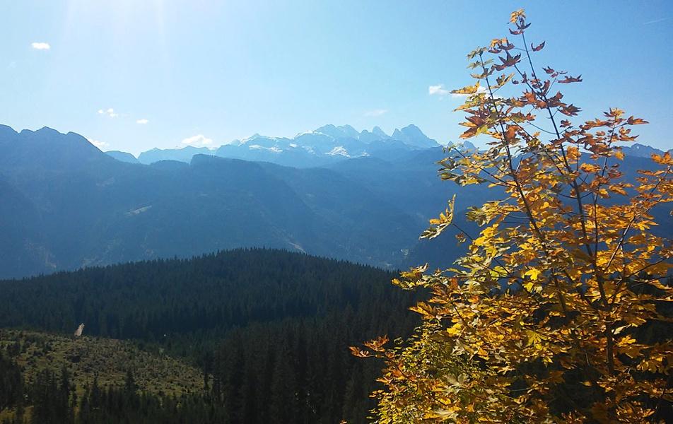 Blick Richtung Dachstein