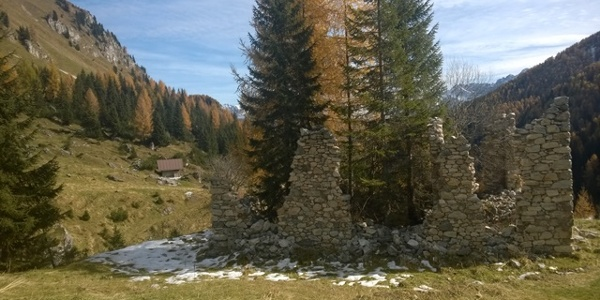 paesaggio percorso Cresta del Palombino Val Visdende