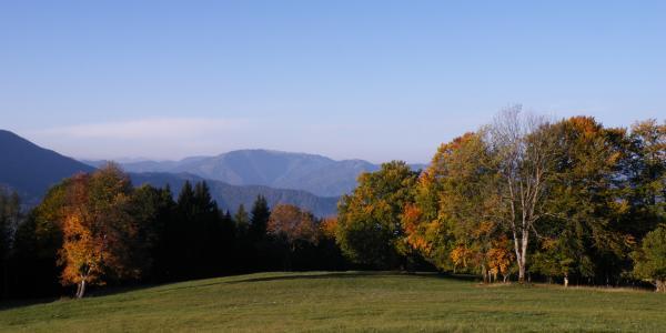 Herbststimmung mit Tirolerkogel