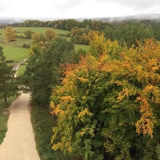 Herbstwald von der Himmelsleiter aus