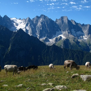 Bergeller Dolomiten.