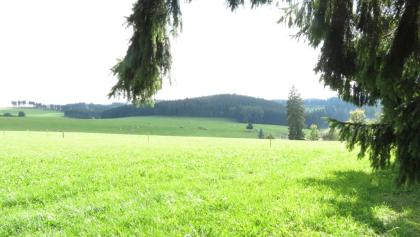 Aussicht in der Wittgensteiner Schweiz