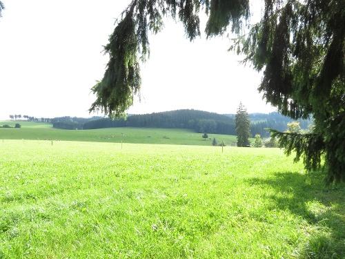 In der Wittgensteiner Schweiz