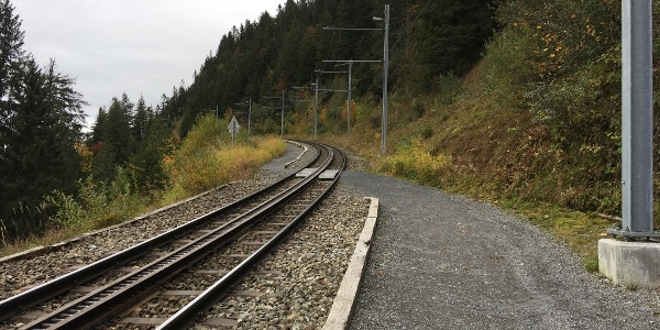 1. Use paths and beware of trains!