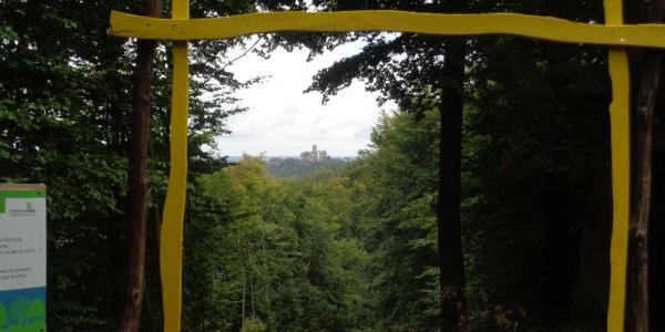 """""""Wilde Sau"""" Sichtachse zur Wartburg"""