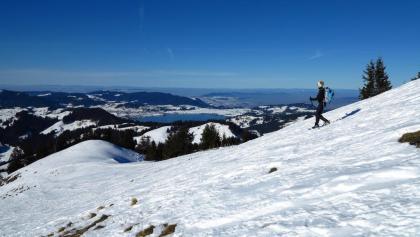Im Gipfelhang des Chli Aubrig.