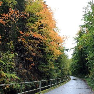 Radweg an der Flöha