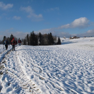 Schöne Winterwanderung übers offene Feld.