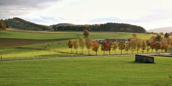 Landstraße bei Seitfeld
