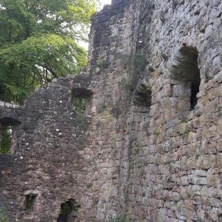 Ruine Lichtenfels in Leinstetten