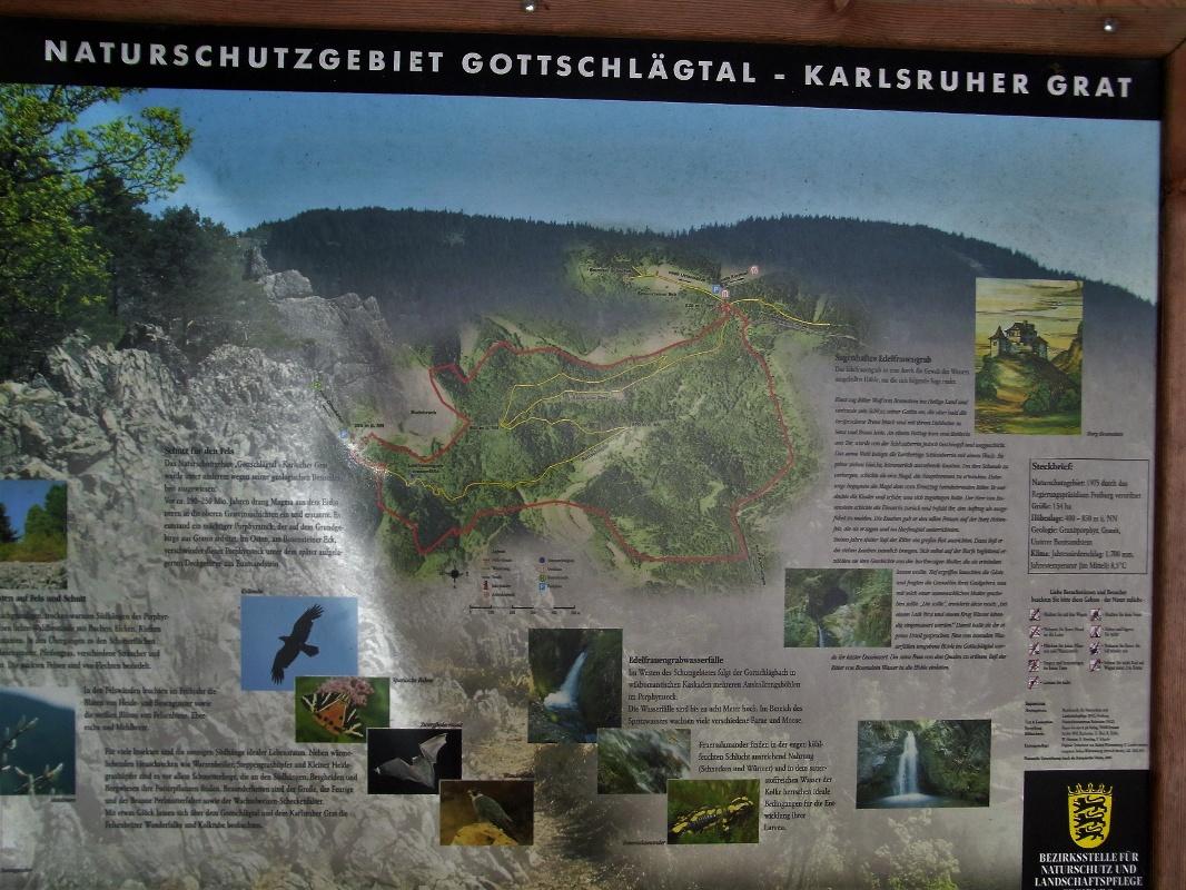 Klettersteig Schwarzwald : Vortour pwv og insheim klettersteig karlsruher grat alpine