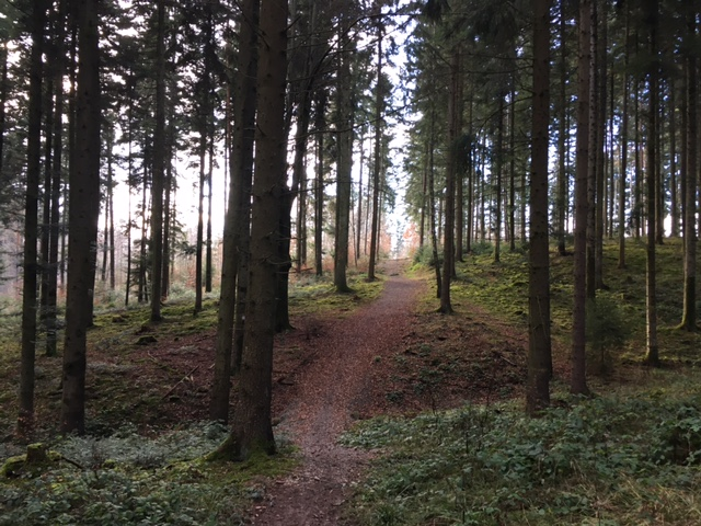 Wegverlauf Kirchberg-Rundweg