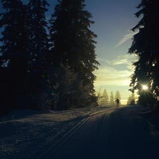 Nachtloipe in den frühen Morgenstunden