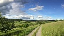 Nordic Walking - Sparkassen-Trail Heimbuchenthal