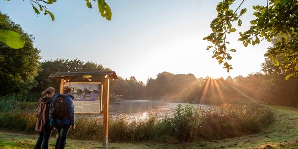 Dorfweiher Waldweiler in den frühen Morgenstunden