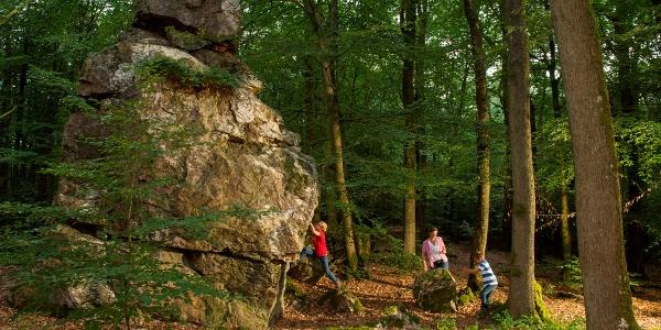 Felsformationen auf der Strecke