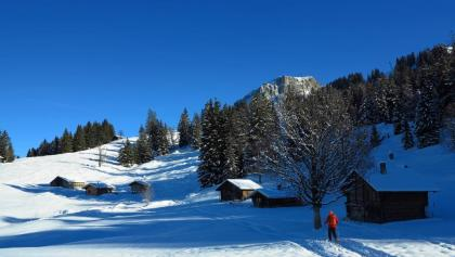 Schönes Schneeschuhgelände: Axalp oberhalb Brienz.