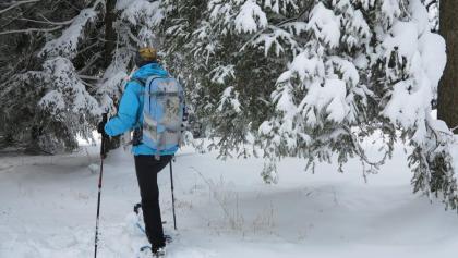 Winterlicher Jurawald zwischen Le Locle und La Chaux-de-Fonds.