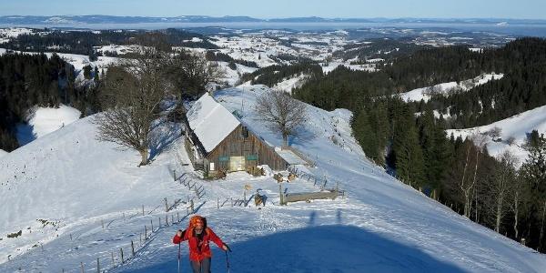 Aufstieg zum Napf, unten die Alp Trachselegg.