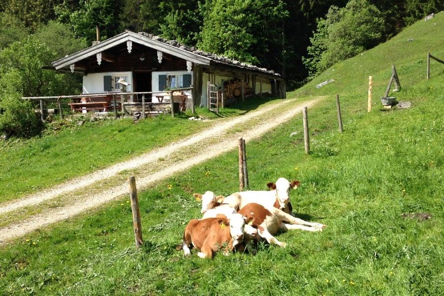 Zwischen den Bergsteigerdörfern Schleching und Sachrang