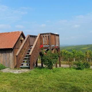 Bester Aussichtspunkt auf die Weininsel bei Neuses a. Berg