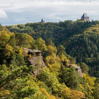 Felsen, Wald und …