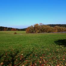 Auf dem Weg nach Hochemmingen, im Hintergrund der Thyssen Turm in Rottweil