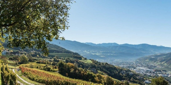 View from Raas/Rassa to Brixen/Bressanone