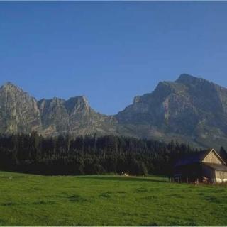 Mulleren-Alp