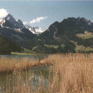 Malerische Landschaft am Schwarzsee