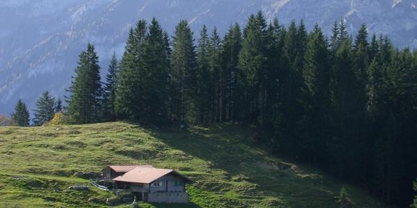 Auf dem Lötschberg-Panoramaweg