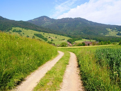 Chemin rural entre Schubhus et Büel
