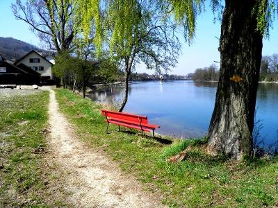 dem Rhein entlang bei Mumpf