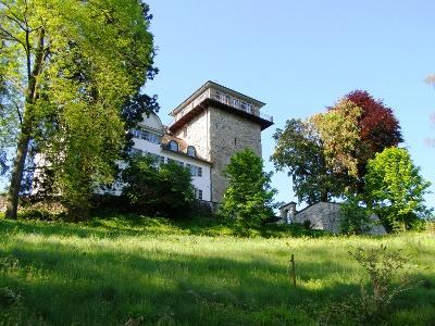Schloss Sulzberg ob Goldach